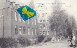 BASSE-WAVRE - Petit Séminaire - Les Classes - Animée Avant Plan Avec Des Ruminants - Wavre