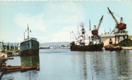 11 - Port La Nouvelle - Le Port - - Port La Nouvelle