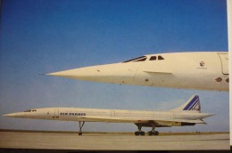 CONCORDE   AIR FRANCE     CARTE COMPAGNIE / AIRLINE ISSUE - 1946-....: Moderne