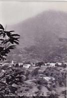 C-2406 Cartolina Castelnuovo Nigra Sale M.821 - Panorama - Italia