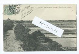 CPA -Les Sables D'Olonne - Les Marais Salants - Sables D'Olonne