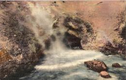 WYOMING-YELLOWSTONE: POSTCARD THE DRAGON'S MOUTH. YELLOWSTONE PARK. GECKO. - Yellowstone
