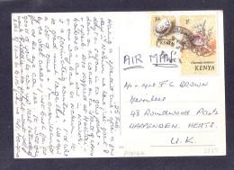 Large Size Postally Used Kenya Stamps Masai Village ? - Kenya