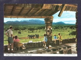 Large Size Postally Unused Kenya KILAGUNI LODGE TSAVO NATIONAL PARK - Kenya
