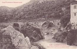 Cp , 66 , AMÉLIE-les-BAINS ,  Vieux Pont De Palalda Sur Le Tech - Frankrijk