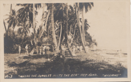P3269 Honduras Where The Jungle Meets The Sea W Scan Front/back Image - Honduras
