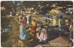 Guyana British Demerara Roadside Market On Sugar State  The Argosy Co Georgetown - Cartes Postales