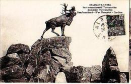 Beaumont Hamel  104          Parc Commémoratif Terreneuvien. Monument Terreneuvien ( Caribou )  . - France