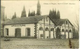 CPA  MONTFAVET, Château De Brignan , Apiculture  9367 - Francia