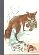 Maximum Card Romania, Animals, Fauna, Fox (Vulpes Vulpes) - Timbres