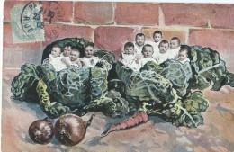 Bébés/ Carte Humoristique/Bébés Dans  Choux /Pont De L´Arche / Eure/ 1906   HUM6 - Humorkaarten