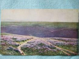 LANDE AUX BRUYERES / PLATEAU DE GER / BELLE CARTE DIDIER POUGET N°649 - Autres Communes