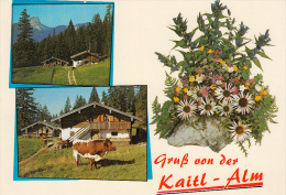 Inzell Ak81512 - Germania