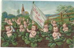 Bébés/ Carte Humoristique/Bébés Dans Choux/ Vive La Liberté /Béruges/Poitiers/ 1908   HUM7 - Humorkaarten