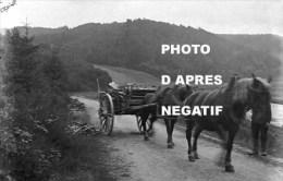 Dohan Attelage 2 Chevaux Photo Reproduite D´après Négatif - Bouillon