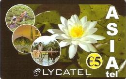 *ITALIA - LYCATEL* - Scheda Usata - Flowers