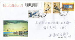 China 2007 Biddulphs Ground JayTaiwan Blue Magpies Monal Pheasant Horses Barcoded Registered Stationary Cover - Gallinacées & Faisans