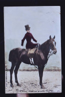 CHEVAL CP PHOTO - Pferde