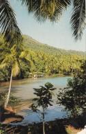 Splendeur De L'ILE De TAHAA  ( Iles Sous Le Vent) - Cartes Postales