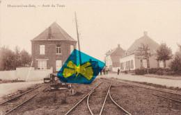 MONTROEUL-sur-BOIS - Arrêt Du Tram à Vapeur - Rare Carte - Frasnes-lez-Anvaing