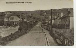 CLYYD - PRESTATYN - THE HILLS FROM THE LANE Clw 19 - Flintshire