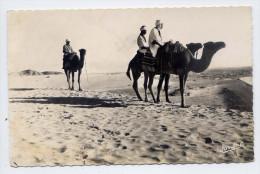 """Alg�rie--BOU-SAADA--""""Cit� du Bonheur""""--Chameliers dans le d�sert (chameaux) , cpsm 9 x 14  n� 120  �d Jomone-"""