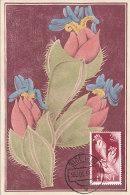 D15982 CARTE MAXIMUM CARD 1956 IFNI - TROPICAL FLOWER CP ORIGINAL - Altri