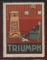 TRIUMPH ADVERTISING POSTER STAMP NHM DESIGN 1 FIREPLACE  CINDERELLA STAMP - Erinnophilie