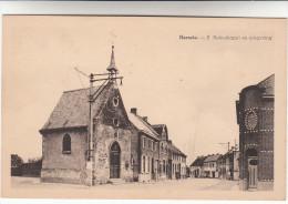Herzele, S Rokuskapel En Omgeving (pk13604) - Herzele