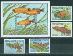 Sierra Leone 1988 Fish MNH** - Lot. A301 - Sierra Leone (1961-...)