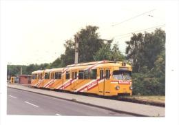 Photo ( 10 X 15 Cm) D´un Tram, Tramway -  Ligne 5 - Ossendorf - Allemagne  (b134) - Trains