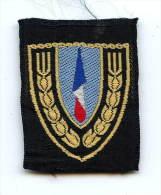 Ecusson De Beret Chantiers De Jeunesse - Armée De Terre