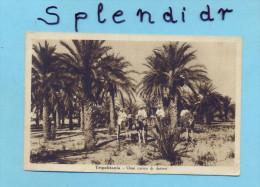 CP LIBYA- TRIPOLITANIA -OASI CARICO DI DATTERI-1939 - Libyen