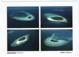 MALDIVES - MAYAAFUSHI, FESDU, BATHALA, HALAVELI (PHOTO MICHAEL FRIEDEL No.23/117) / THEMATIC STAMP-BIRD - Maldive