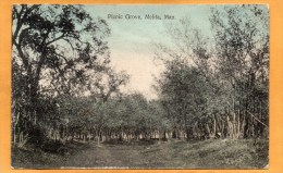 Picnic Grove Melita Man 1908 Postcard Mailed - Other