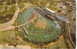 DISNEYLAND: TOMORROWLAND. A PANORAMIC VIEW, AS SEEN FROM THE MATTERHORN MOUNTAIN. GECKO. - Disneyland