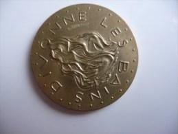 Médaille Représentant Les Emblèmes De La Ville De DIVONNE LES BAINS - Autres