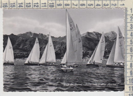 Forte Dei Marmi Mare Vele E Alpi Apuane  Barche  1957 - Lucca