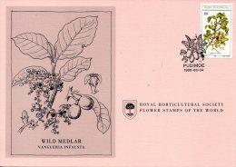 BOPHUTHATSWANA. N°57 Sur Carte 1er Jour De 1980. Fruit Sauvage Comestible. - Fruit