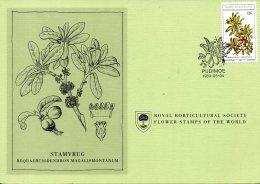 BOPHUTHATSWANA. N°58 Sur Carte 1er Jour De 1980. Fruit Sauvage Comestible. - Fruit