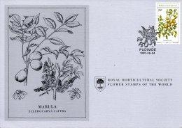 BOPHUTHATSWANA. N°59 Sur Carte 1er Jour De 1980. Fruit Sauvage Comestible. - Fruit