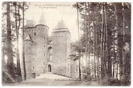 CP, 42, NOIRETABLE, Château, Entrée Principale, Ecrite - Noiretable