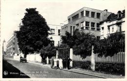 BELGIQUE - FLANDRE ORIENTALE - WETTEREN - Pensionaat Van Het H. Hart - Pensionnat Du Sacré-Coeur. - Wetteren