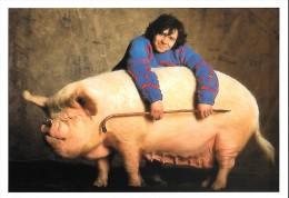 CARTE POSTALE : TRUIE MIDDLE WHITE ; COCHON ; (C) PHOTO DE YANN ARTHUS BERTRAND PARIS 1994 . - Illustrateurs & Photographes