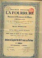 HOFSADE-LEZ-ALOST « SA La Fourrure – Tannerie & Teinturerie De Peaux » (1895) - Action De Capital De 100 Fr - Textiel