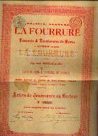 HOFSADE-LEZ-ALOST « SA La Fourrure – Tannerie & Teinturerie De Peaux » (1895) - Action De Jouissance - Textiel