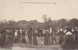 56 Noce Bretonne Aux Environs De VANNES  La Ridée - Vannes