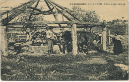 Arredores Do Porto Uma Nora Antoga Noria Moulin A Boeufs  Circulada - Autres