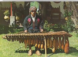 MARIMBA DE TECOMATES .NATIVE INDIAN PLAYING TYPICAL MARIMBA INSTRUMENT     CPSM - Guatemala