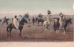 CPA Algérie - Cavaliers Arabes (1950) - Algerien
